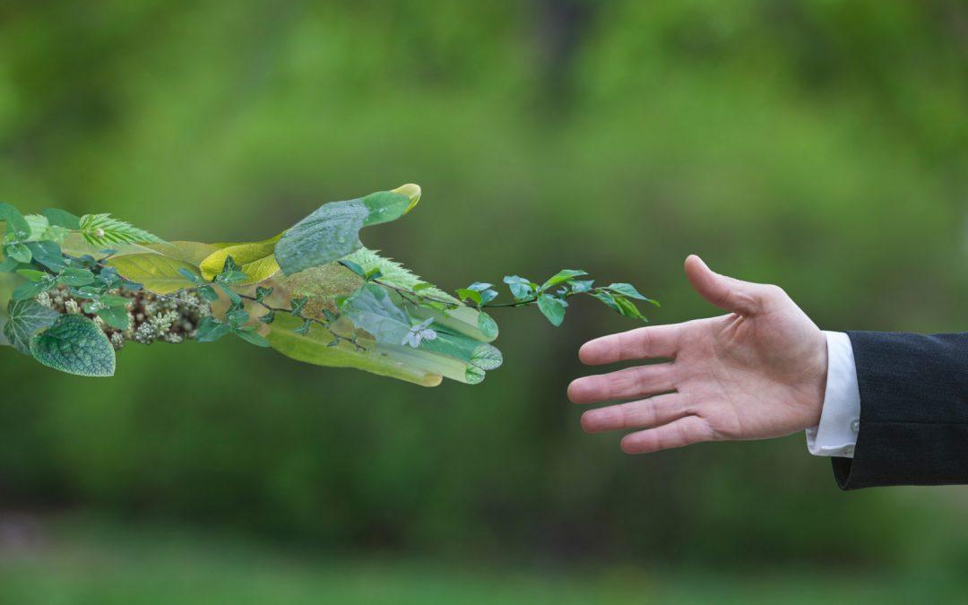 Versicherer und Nachhaltigkeit